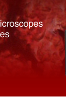 Welcome to Bargain Microscopes